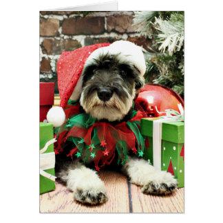 Christmas - Schnauzer - Tom Dooley Greeting Card
