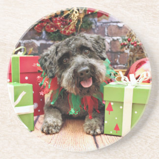 Christmas - Schnoodle - Dexter Coaster