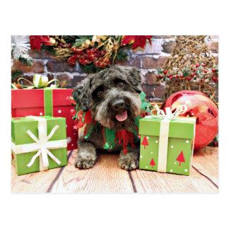 Christmas - Schnoodle - Dexter Postcard