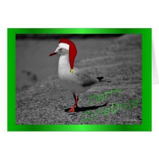 Christmas seagull santa hat funny Christmas humor Greeting Card