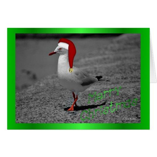 Christmas seagull santa hat funny Christmas humour Card