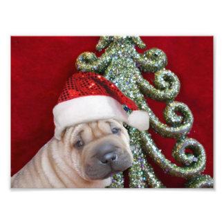 Christmas shar pei puppy photo print