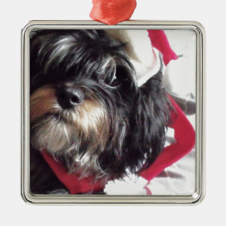 Christmas Shih Poo Silver-Colored Square Decoration