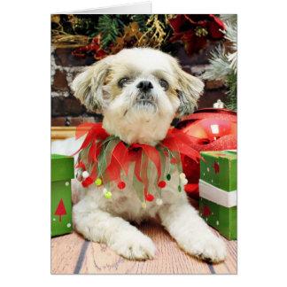 Christmas - Shih Tzu - Bailey Greeting Cards