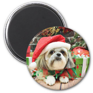 Christmas - Shih Tzu - Gizmo 6 Cm Round Magnet