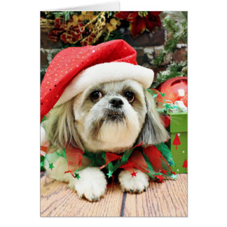 Christmas - Shih Tzu - Gizmo Greeting Card