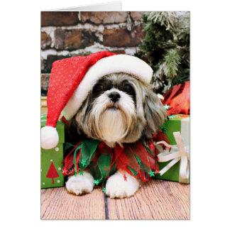 Christmas - Shih Tzu - Vince Greeting Card