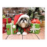 Christmas - Shih Tzu - Vince Post Cards