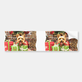 Christmas - Silky Terrier - Haley Bumper Sticker
