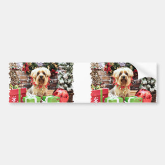 Christmas - Silky Terrier - Loki Bumper Stickers