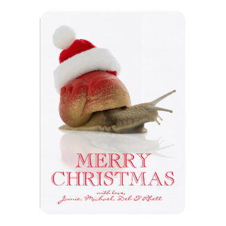 Christmas Snail 13 Cm X 18 Cm Invitation Card