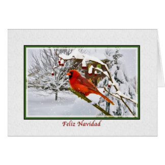 Christmas, Spanish, Cardinal Bird, Snow, Card