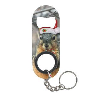 Christmas Squirrel