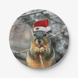 Christmas Squirrel 7 Inch Paper Plate