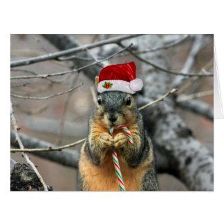 Christmas Squirrel Big Greeting Card