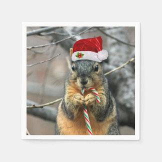 Christmas Squirrel Disposable Napkin