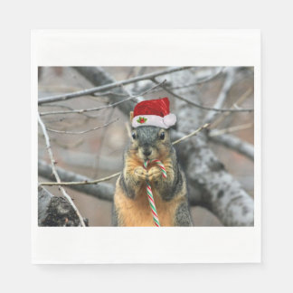 Christmas Squirrel Disposable Serviette