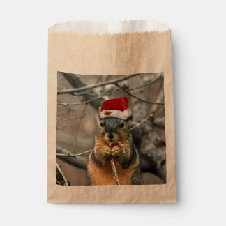Christmas Squirrel Favour Bags