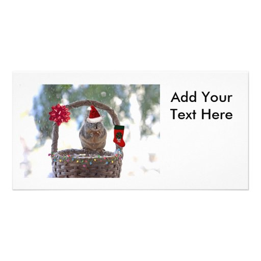 Christmas Squirrel in Snowy Basket Photo Card Template