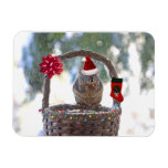 Christmas Squirrel in Snowy Basket Rectangular Magnets
