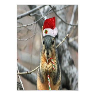 Christmas Squirrel Magnetic Card