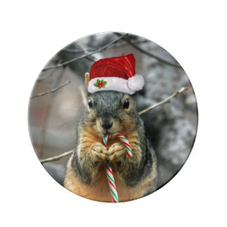 Christmas Squirrel Plate