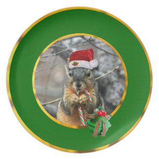 Christmas Squirrel Plates