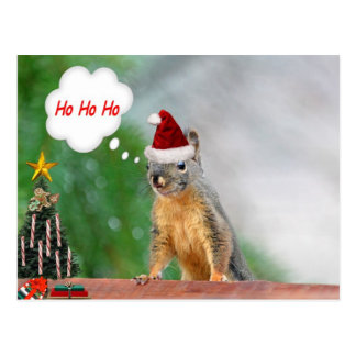 Christmas Squirrel Saying Ho Ho Ho Postcards