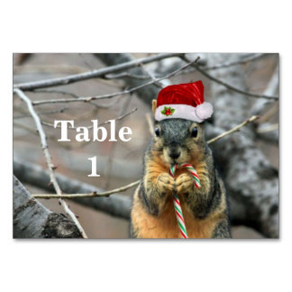 Christmas Squirrel Table Cards