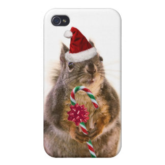 Christmas Squirrel with Candy Cane iPhone 4 Cases
