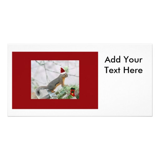 Christmas Squirrel with Christmas Stocking Photo Card