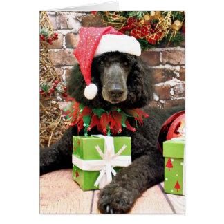 Christmas - Standard Poodle - Bronco Greeting Card