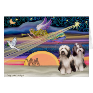 Christmas Star - Bearded Collies (two 1, 4) Greeting Card