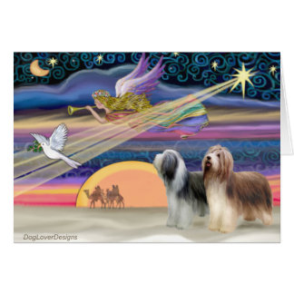 Christmas Star - Bearded Collies (two) Card