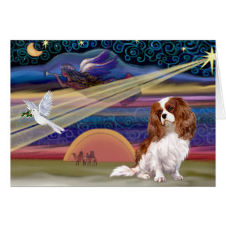 Christmas Star - Cavalier (Blenheim) Greeting Card