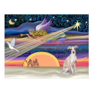 Christmas Star - Italian Greyhound 5 Postcard