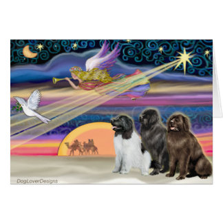Christmas Star - Newfoundland (three) Card