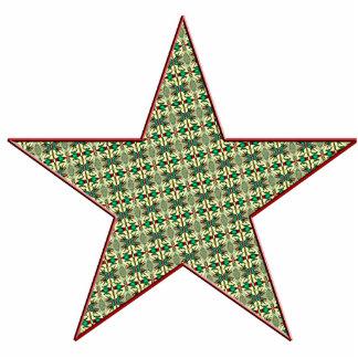 Christmas Star Photo Sculpture Decoration