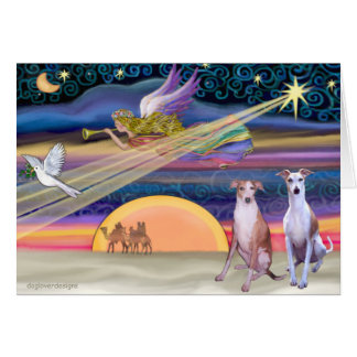 Christmas Star - Whippets (two) Card