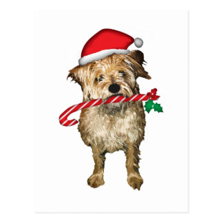 Christmas terrier gifts post cards