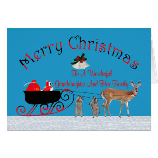 Christmas to Granddaughter/Family Greeting Card