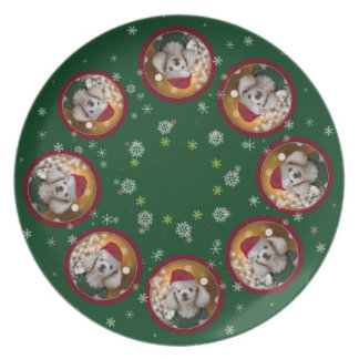 Christmas toy poodle dog dinner plate