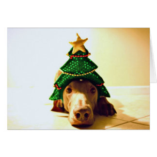 Christmas Tree Head Card