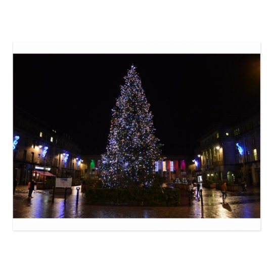 Christmas Tree in Dundee Postcard