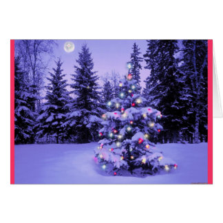Christmas Tree in the Forest Card