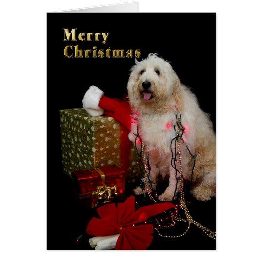 Christmas - Tree Lights on Doggie Card