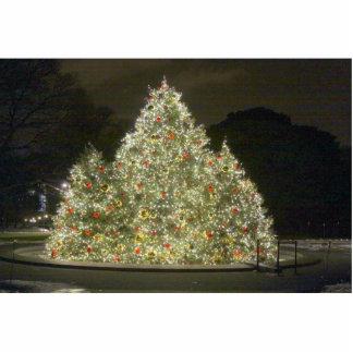 Christmas Tree Standing Photo Sculpture