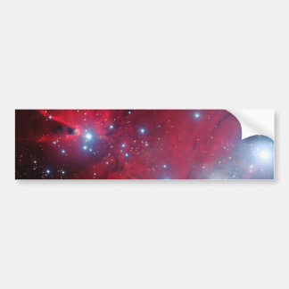 Christmas Tree Star Cluster Bumper Sticker