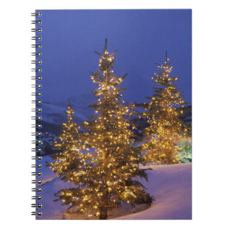 Christmas trees, Park City, Wastch Mountains, 2 Spiral Notebook
