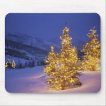Christmas trees, Park City, Wastch Mountains, Mouse Pad